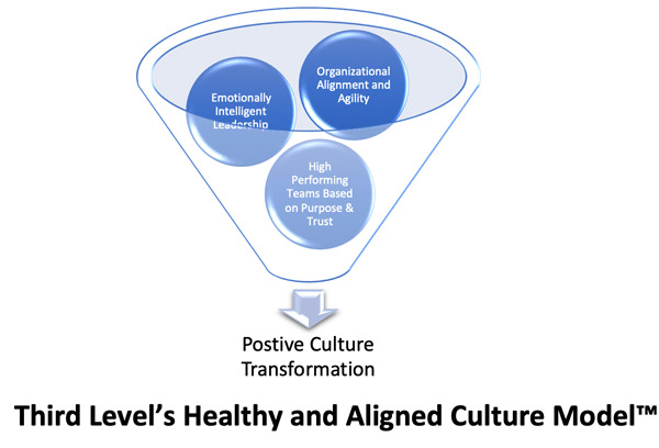 aligned-culture-model